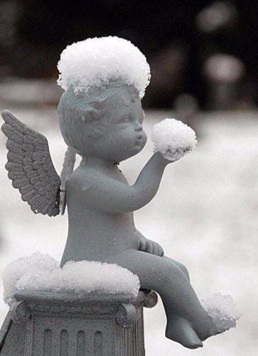 У каждого человека есть свой ангел-хранитель. 331973054