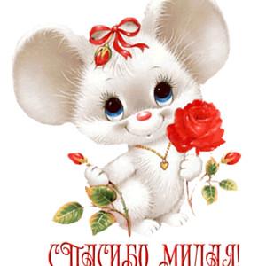 Спасибо, милая! <b>Белая</b> мышка <b>с</b> <b>цветком</b> картинка смайлик gif анимация фото рисунок