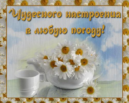 Открытки прекрасного дня и настроения