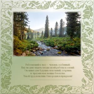 Поздравления с днём работника леса в стихах 20
