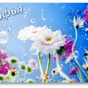С Днем ангела, Софья! <b>Цветы</b> на <b>голубом</b> фоне картинка смайлик gif анимация фото рисунок