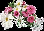 http://kartinki-vernisazh.ru/_ph/43/2/220881483.png
