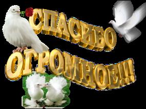 http://kartinki-vernisazh.ru/_ph/43/2/607701810.png?1492973610