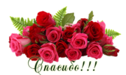 http://kartinki-vernisazh.ru/_ph/43/2/680069080.png?1519149236